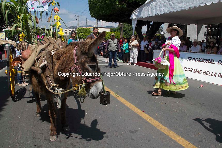 San Juan del R&iacute;o, Qro., junio 21 del 2015.- Como parte de los festejos del 484 aniversario de la Fundaci&oacute;n de San Juan del r&iacute;o, se realiz&oacute; el d&iacute;a dedicado a los campesinos sanjuanenses con el tradicional festejo de &ldquo;La Flor m&aacute;s bella del Ejido&rdquo;, donde participan 54 representantes de los ejidos de San Juan del R&iacute;o primeramente en un recorrido en coloridos carros aleg&oacute;ricos, donde muestran parte de la naturaleza y las actividades diarias de la gente del campo, adem&aacute;s de llevar trajes t&iacute;picos de la regi&oacute;n.<br /> <br /> Algunos carros fueron impulsados por tractores, caballos, otros por camionetas, pero siempre con la particularidad de mostrar el trabajo de las comunidades ya sea en las actividades de labranza, de gastronom&iacute;a local o la fabricaci&oacute;n de artesan&iacute;as, siempre animados por las personas que les acompa&ntilde;aban gritando porras hacia su representante y la comunidad.