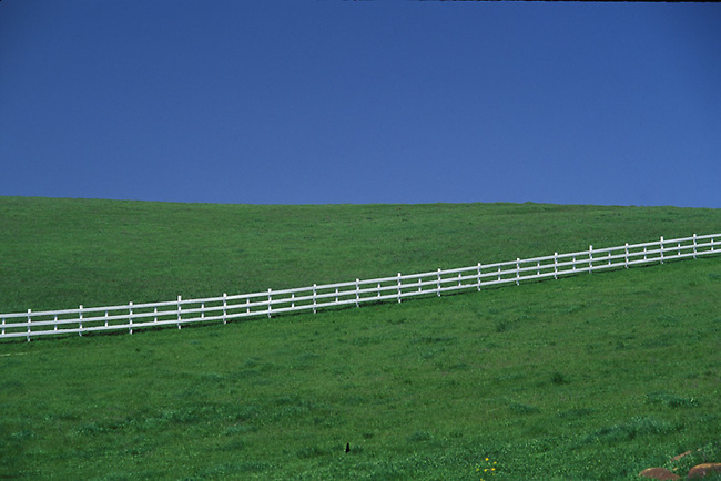 Green Hills near Napa