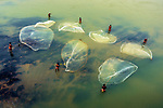Pictured: Stunning photographs show the different techniques used by fishermen and fisherwomen in a shallow river.    The women use wooden triangular shaped baskets while the men cast five metre nets out in a wide circle.<br /> <br /> After working all day they divide the fish up equally and sell them at the local market.   The beautiful images were captured by graphic designer and photographer Saurabh Sirohiya in Garbeta in the Medinipur district in West Bengal, India.    SEE OUR COPY FOR DETAILS<br /> <br /> Please byline: Saurabh Sirohiya/Solent News<br /> <br /> © Saurabh Sirohiya/Solent News & Photo Agency<br /> UK +44 (0) 2380 458800