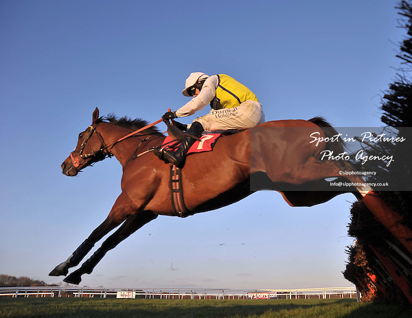 Oscar Prairie ridden by Paddy Brennan over the last. Race 6. Racing Plus Handicap Hurdle. Racing Plus Chase Day. Kempton Park Race Course. Middlesex. 25/02/2012. MANDATORY Credit Garry Bowden/Sportinpictures - NO UNAUTHORISED USE - 07837 394578