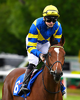 Sir Chancealot  ridden by Robert Havlin goes down to the star of The First Carlton Novice Auction Stakes Div 1 during Evening Racing at Salisbury Racecourse on 11th June 2019