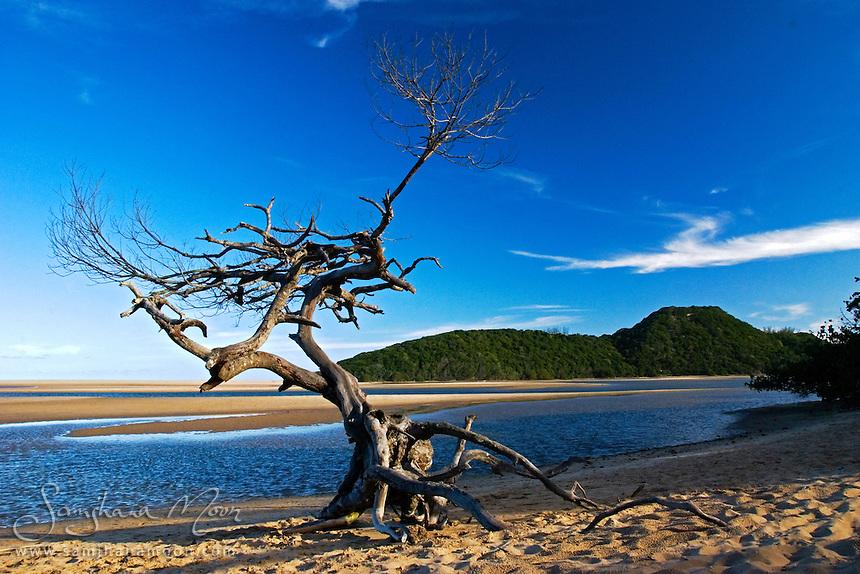 Kosi Bay, nature reserve, KwaZulu-Natal, South Africa. iSimangaliso Wetland Park, a UNESCO World Heritage Site. The closest town is Manguzi, some 13 kilometres (8.1 mi) away. Kosi Bay estuary is only 2 kilometres (1.2 mi) from the Mozambique border.