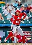 1 March 2019: Washington Nationals first baseman Jose Marmolejos at bat during a Spring Training game against the Miami Marlins at Roger Dean Stadium in Jupiter, Florida. The Nationals defeated the Marlins 5-4 in Grapefruit League play. Mandatory Credit: Ed Wolfstein Photo *** RAW (NEF) Image File Available ***