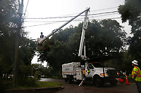 Crews clearing vegetation near power lines during Hurricane Dorian in St. Augustine, Fla. on September 4, 2019
