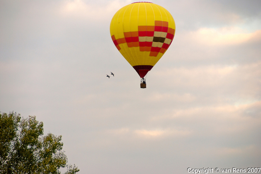 Hot air ballon in flight pattern with 2 curious birds
