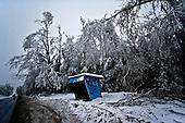 Niegowa 01.2010 Poland<br /> Three atmospheric forces: rain, snow and frost have changed into an ecological disaster the Myszkowski district in the Czestochowskie province, located 230 kilometers south of Warsaw. Almost 95% of all trees are down.Thousands of homes are left without electricity.<br /> Photo: Adam Lach / Napo Images for Newsweek Polska<br /> <br /> Zamarzniety krzyz na drodze w pow.myszkowskim.<br /> Wstepnie &quot;tylko&quot; 95% scietych drzew w dwoch powiatach. 0.5 miliona metrow szesciennych zniszczonych lasow..Tysiace gospodarstw bez pradu. Wszyscy maja swiadomosc, ze na kumulacje trzech niekorzystnych .zjawisk atmosferycznych rady nie ma.Trzy zjawiska kt&oacute;re zamienily jeden z obszarow Polski w istna katastrofe ekologiczna: deszcz, snieg i szadz.<br /> Fot: Adam Lach / Napo Images dla Newsweek Polska