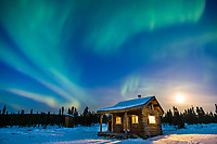Aurora Borealis over Moose Creek cabin in the White Mountains National Recreation Area, Interior, Alaska.