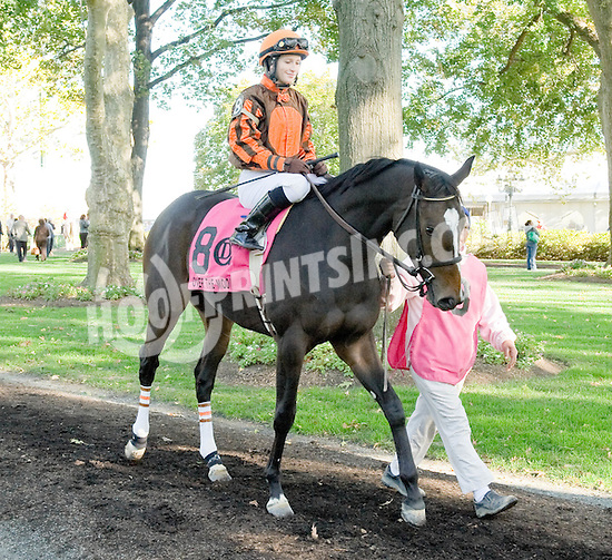 Over the Moon before The Small Wonder Stakes at Delaware Park on 10/16/10