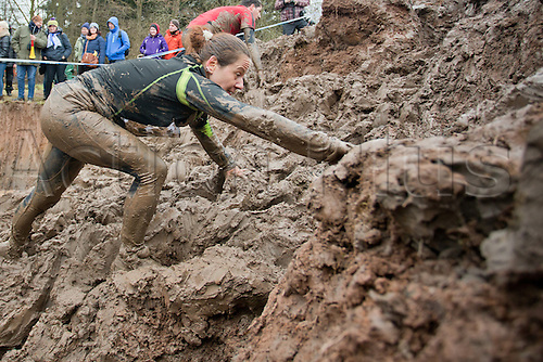 12.03.2016. Bischofsheim, Germany.  Participants of the extreme run Braveheart Battle crawling through a mud pit in Bischofsheim, Germany. Almost 2,700 runners have to manage a 30 kilometer track with 45 obstacles. The extreme run event leads through ice cold water, deep mud pits and hot fire obstacles. It is said to be one of the hardest in Europe.