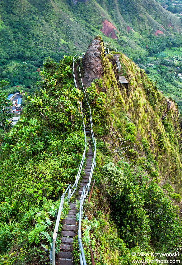 "Steps along a ridge of the Ko'olau mountains on the Haiku Stairs (""Stairway to Heaven"") hiking trail in Kaneohe, Oahu"