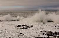 Powerful waves crash into the rocky shoreline at Bean Hollow Sate Beach along the California coast on an overcast winter morning.