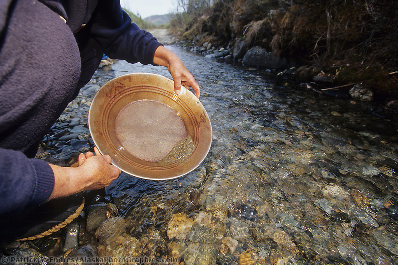 Panning for gold nuggets in Moose creek, Denali National Park, Alaska