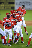 Batavia Muckdogs first baseman Carlos Lopez is mobbed by teammates including Ryan Aper #11 and Austin Dean #3 after a walk off hit during a game against the Mahoning Valley Scrappers on June 21, 2013 at Dwyer Stadium in Batavia, New York.  Batavia defeated Mahoning Valley 3-2.  (Mike Janes/Four Seam Images)