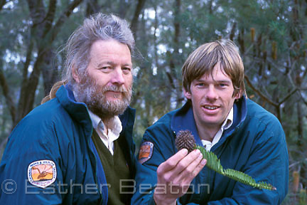 Dr Wyn Jones, botanist, and Dave Noble, ranger, holding branch of the rediscovered fossil Wollemi Pine (Wollemia nobilis) in Wollemi National Park.