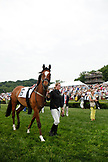 USA, Tennessee, Nashville, Iroquois Steeplechase, cooling down a horse following the fourth race