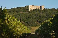 Europe/Europe/France/Midi-Pyrénées/46/Lot/Grézels:  Le Château de La Coste à Grézels - Construit au 12ème siècle par les évêques de Cahors, ce château a été transformé en place forte au 14ème siècle . Il abrite aujourd'hui le musée du Vin de Cahors dédié à la vigne et au vin