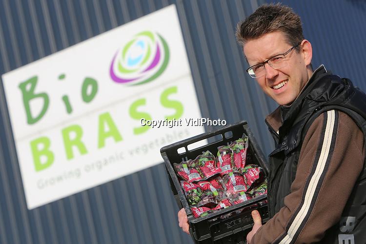 Foto: VidiPhoto<br /> <br /> ZEEWOLDE - Pools en Hongaars personeel aan het werk bij teeltbedrijf van biologische groenten, Bio Brass in Zeewolde. Bio Brass teelt en verwerkt op grote schaal (200 ha.) biologische groenten. Een groot deel van de producten is bestemd voor de export. In Nederland is onder andere Albert Heijn een grote klant. Foto: Eigenaar Gerjan Snippe.
