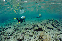 Scuba divers swim over rubble in shallow water, Bonaire, Netherlands Antilles, Caribbean, Atlantic