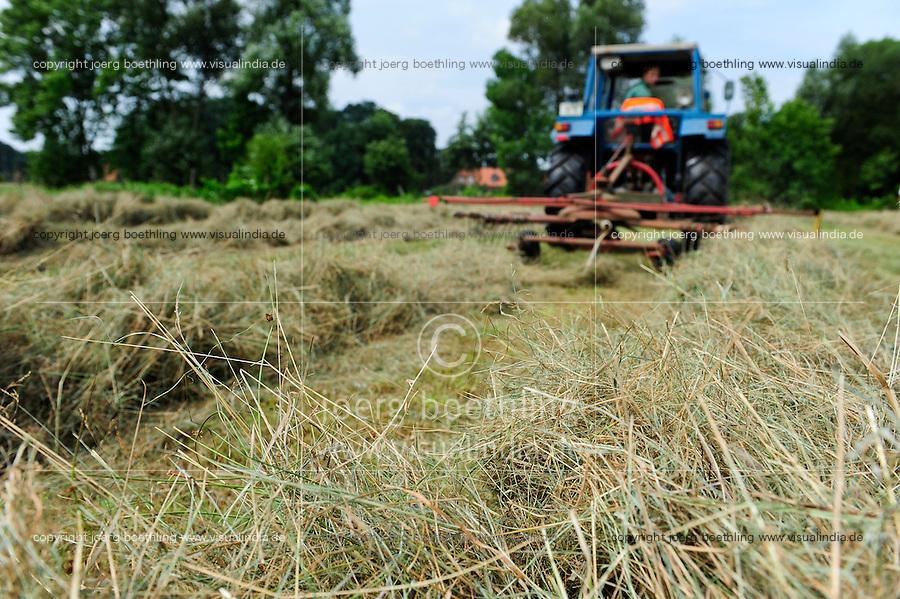 GERMANY, Hitzacker, hay farming with Ford tractor / DEUTSCHLAND, Hitzacker, Heuernte, Wiesen, Weiden und Naturschutzwiesen fuer den Heuanbau, Trocknung