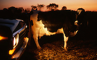 Original image photographed on Kodak Ektachrome film in November 1981.<br />