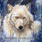 Sandi, REALISTIC ANIMALS, REALISTISCHE TIERE, ANIMALES REALISTICOS, paintings+++++wintersedge2,USSN96,#a#, EVERYDAY ,wolf,wolves ,wolf,wolves ,puzzles