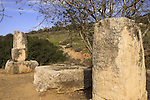 Roman milestones on the ancient Jerusalem-Beth Guvrin road
