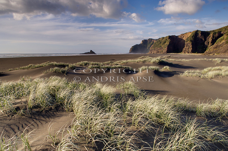 Karekare Beach in the Auckland Region New Zealand.