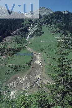 Avalanche path, Tyrolean Alps, Austria.