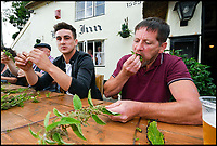 BNPS.co.uk (01202 558833)<br /> Pic: Graham Hunt/BNPS<br /> <br /> Matthew White (Right) competing in the World Nettle Eating Championships at the Bottle Inn, Marshwood, Dorset, UK.