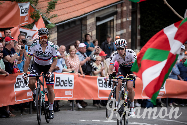 Peter Sagan (SVK/Bora Hansgrohe), Daryl Impey (RSA/Mitchelton Scott) up the infamous Mur de Huy. <br /> <br /> 83th Flèche Wallonne 2019 (1.UWT)<br /> 1 Day Race: Ans – Huy 195km<br /> <br /> ©kramon