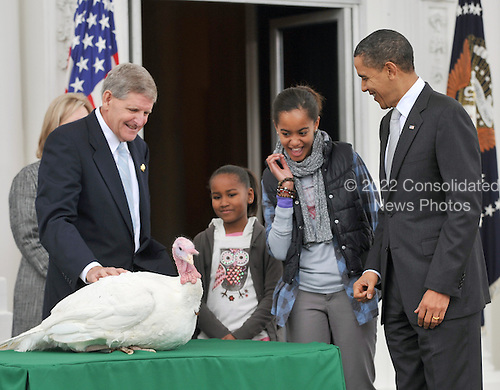 """Washington, D.C. - November 25, 2009 -- Malia Obama is startled after she reached to touch """"Courage"""" the turkey pardoned by United States President Barack Obama during the traditional turkey pardoning ceremony on the North Portico of the White House on Wednesday, November 25, 2009.  From left to right: Walter Pelletier, Chairman, National Turkey Federation; Sasha Obama; """"Courage"""" the Turkey; Malia Obama; and President Obama..Credit: Ron Sachs / Pool via CNP"""