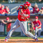 4 March 2016: St. Louis Cardinals outfielder Carlos Peguero in action during a Spring Training pre-season game against the Houston Astros at Osceola County Stadium in Kissimmee, Florida. The Cardinals fell to the Astros 6-3 in Grapefruit League play. Mandatory Credit: Ed Wolfstein Photo *** RAW (NEF) Image File Available ***