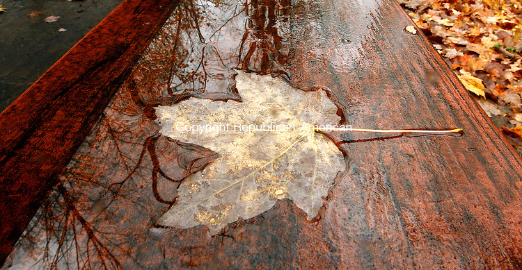 Middlebury, CT- 27, October 2010-102710CM01  Various trees are reflected in a puddle on top of a picnic table at Hop Brook Lake in Middlebury Wednesday afternoon.  The warm weather is expected to continue today (Thursday) with highs in the 70s.  Christopher Massa Republican-American