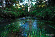 Image Ref: W014<br />