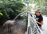 Auszubildende Clara Ritterbach sorgt bei den Emus für eine Erfrischung mit dem Schlauch - Weiterstadt 05.08.2018: Tag der offenen Tür auf der Keller-Ranch