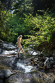 USA, California, Big Sur, Esalen, a woman puts her toes into Hot Springs Creek at the Esalen Institute