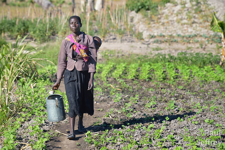 Rhoda Nyoni, her son Moses on her back, carries a watering can in a community vegetable garden in Kayeleka Banda, Malawi. Nyoni is pregnant, and the Maternal, Newborn and Child Health program of the Livingstonia Synod of the Church of Central Africa Presbyterian works with her and other women in the village to insure that they and their children receive proper nutrition and health care.