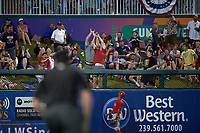 Minnesota Twins fans try to catch a home run ball hit by second baseman Brian Dozier (not shown) during a Spring Training game against the Boston Red Sox on March 16, 2016 at Hammond Stadium in Fort Myers, Florida.  Minnesota defeated Boston 9-4.  (Mike Janes/Four Seam Images)