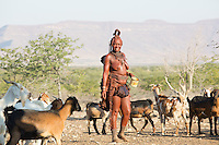 Himba lady herding her goats in remote Kaokoland, Namibia