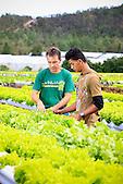 Jean-Louis Bossard (Le Jardin calédonien à Dumbéa) avec un ouvrier en formation