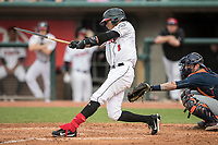 Lansing Lugnuts outfielder Edward Olivares (1) swings the bat during the Midwest League baseball game against the Bowling Green Hot Rods on June 29, 2017 at Cooley Law School Stadium in Lansing, Michigan. Bowling Green defeated Lansing 11-9 in 10 innings. (Andrew Woolley/Four Seam Images)