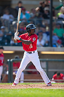 Zeke White (16) of the Billings Mustangs at bat against the Missoula Osprey at Dehler Park on August 20, 2017 in Billings, Montana.  The Osprey defeated the Mustangs 6-4.  (Brian Westerholt/Four Seam Images)