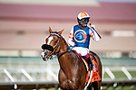 AUG 22: Red King, and a jubilant jockey Umberto Rispoli after their victory in the Breeders' Cup win and you're in Grade II Del Mar Handicap with jockey Umberto Rispoli aboard, in Del Mar, California on August 22, 2020. Evers/Eclipse Sportswire/CSM