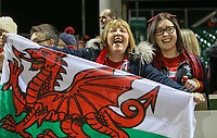 Welsh fans celebrate after the game<br /> <br /> Photographer Alex Dodd/CameraSport<br /> <br /> RBS Six Nations U20 Championship Round 4 - Wales U20s v Ireland U20s - Saturday 11th March 2017 - Parc Eirias, Colwyn Bay, North Wales<br /> <br /> World Copyright &copy; 2017 CameraSport. All rights reserved. 43 Linden Ave. Countesthorpe. Leicester. England. LE8 5PG - Tel: +44 (0) 116 277 4147 - admin@camerasport.com - www.camerasport.com