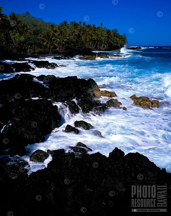 Puna coastline with palms and crashing waves, Big Island