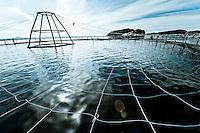 BRB_Blom Fiskeoppdrett