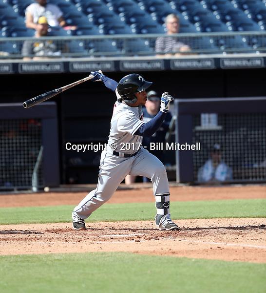 Francisco Mejia - Glendale Desert Dogs - 2017 Arizona Fall League (Bill Mitchell)