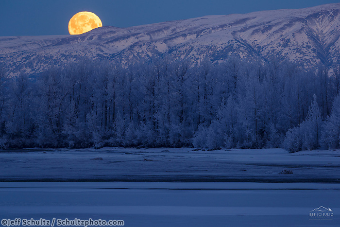 Winter landscape of a full moon set over the Talkeetna Mountains and  frost covered trees along Knik River in the Matanuska Valley near Palmer, Alaska.  Southcentral Alaska<br /> <br /> Photo by Jeff Schultz/SchultzPhoto.com  (C) 2019  ALL RIGHTS RESERVED