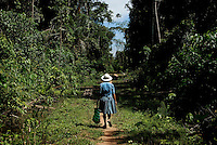 Apolonia Sanchez walks down a small dirt path leading to her Chaco, or coca farm, in the jungle inside the Chaparé region of Bolivia. Sanchez must hike an hour from a side road into her farm, which was hidden due to past farming restrictions and constant military raids on coca plantaions as a result of Law 1008. Sanchez, who has fought with Leonilda Zurita for women's rights in the coca production movement, says that while it is easier to grow coca after Evo Morales won presidency, the market is still not overly prosperous. She has had to open a childrens clothing stand near her home in Eterezama to bring in extra money for her family.