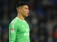 Cardiff City's Neil Etheridge<br /> <br /> Photographer Kevin Barnes/CameraSport<br /> <br /> The EFL Sky Bet Championship - Cardiff City v Bolton Wanderers - Tuesday 13th February 2018 - Cardiff City Stadium - Cardiff<br /> <br /> World Copyright &copy; 2018 CameraSport. All rights reserved. 43 Linden Ave. Countesthorpe. Leicester. England. LE8 5PG - Tel: +44 (0) 116 277 4147 - admin@camerasport.com - www.camerasport.com
